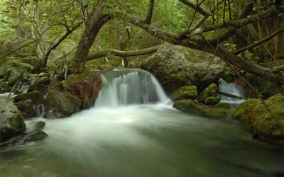 Ruta Majaceite, un río de cuento.
