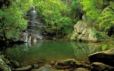 Parque Natural de los Alcornocales